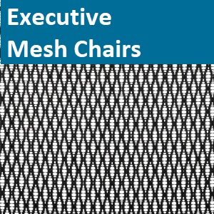 Executive Mesh Chairs