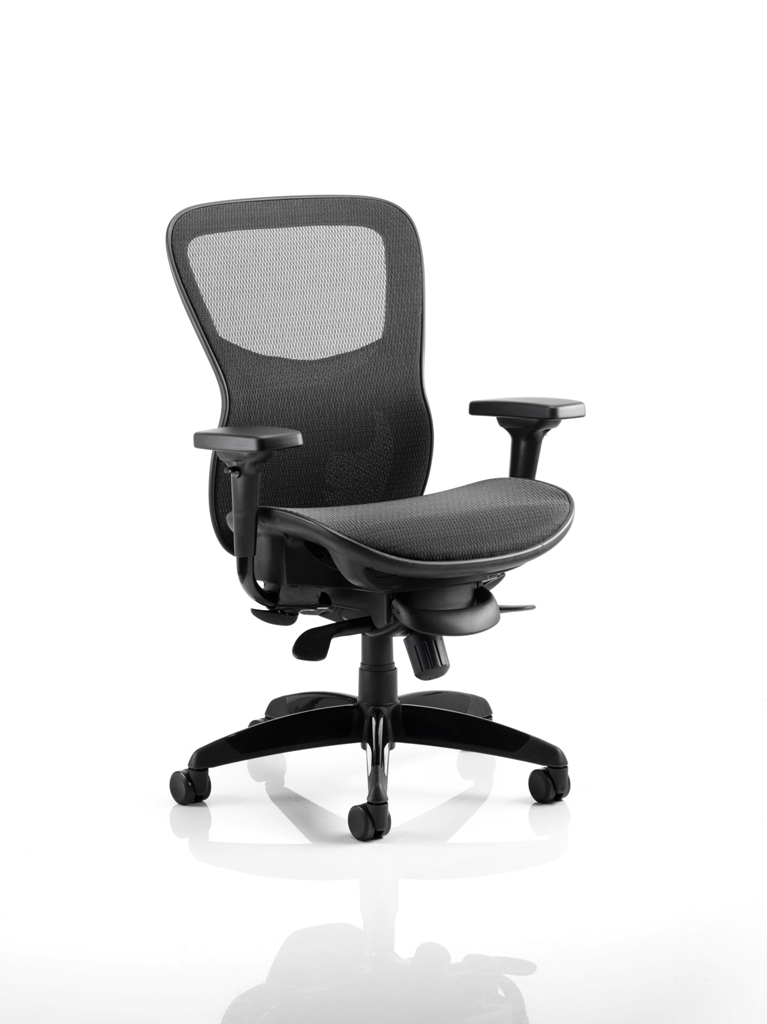 CDP0205 Large Mesh Heavy Duty Contract Posture Ergonomic Executive Office Chair Chiropractor Approved With Seat Slide